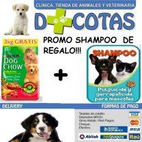 DOG CHOW ADULTO 21+3 KG + 1 SHAMPOO $1780