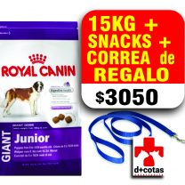 Royal canin giant Junior 15 kg + snacks + 1 correa de regalo ?? $3050 envió gratis