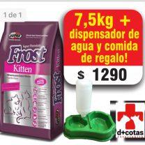 Frost gatitos (kitten) 7.5 kg más dispensador de agua y comida de regalo 🎁